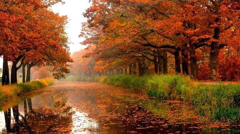 Ξεκινάει αύριο και επίσημα η εποχή του φθινοπώρου