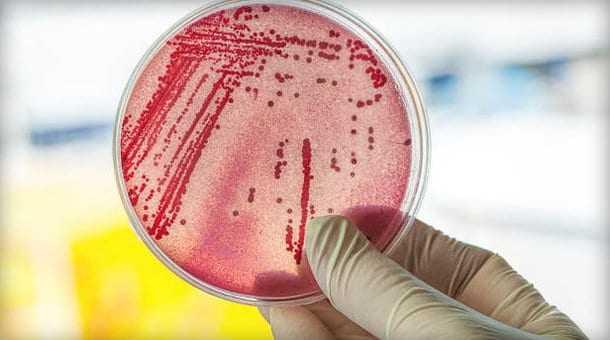 Κάθε άνθρωπος εκπέμπει γύρω του το δικό του ξεχωριστό νέφος μικροβίων