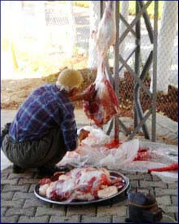 Να ξαναδεί η διεύθυνση κτηνιατρικής το θέμα του σφάγειου κρέατος κατά την διάρκεια των γιορτών