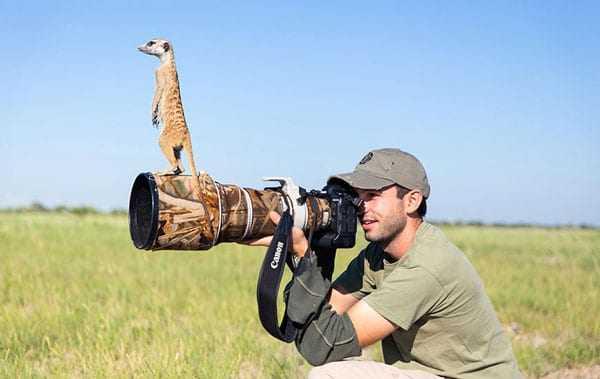 Απίθανες στιγμές των φωτογράφων άγριας ζωής!
