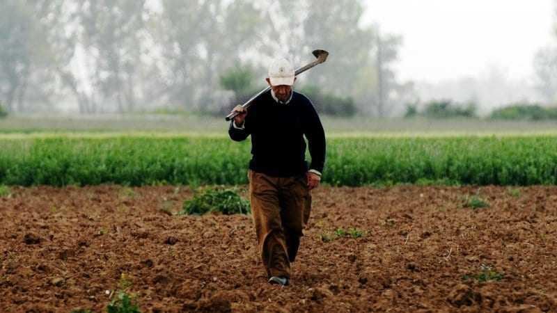 Άντε τώρα να καταλάβει ο αγρότης τι του λέει η αγροτική ανάπτυξη της Περιφέρειας.