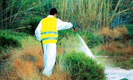 «Ξεκίνησε το έργο καταπολέμησης κουνουπιών 2016»