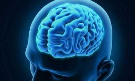 Δημιουργήθηκε ο πρώτος «σημασιολογικός άτλαντας» των λέξεων στον εγκέφαλο