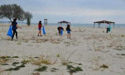 Παγκόσμια ημέρα περιβάλλοντος στον δήμο Τοπείρου