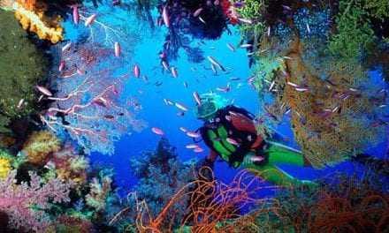 Παγκόσμια Ημέρα των Ωκεανών: Ο βυθός της θάλασσας είναι λιγότερο γνωστός από το σεληνιακό έδαφος