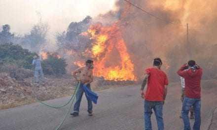 Χίος: Μεγάλες καταστροφές από την πυρκαγιά στις καλλιέργειες των μαστιχόδεντρων