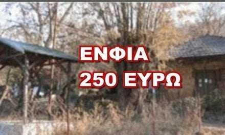ΣΟΚ. 250 ευρώ ΕΝΦΙΑ, σε χωριό με 100 ψυχές, σε σπίτι 80μ2 γκρεμισμένο και χωρίς νερό και ρεύμα