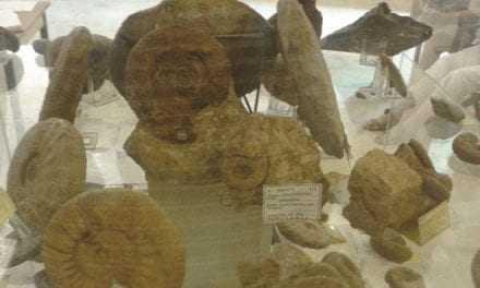 «Η μεγαλύτερη συλλογή απολιθωμάτων στην Ευρώπη έρχεται στον Δήμο Τοπείρου».