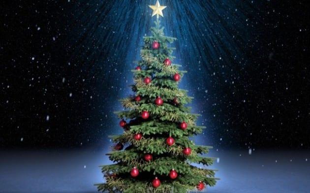 Αποτέλεσμα εικόνας για Τι συμβολίζει το Χριστουγεννιάτικο δέντρο;