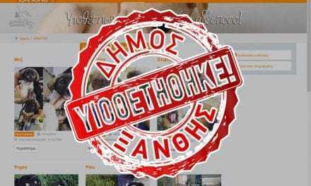 Υιοθετήστε ένα αδέσποτο, με ένα κλικ στο Δήμο Ξάνθης
