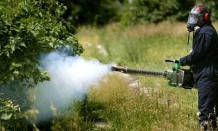 Ξεκίνησε ο κουνουποπόλεμος στην Περιφερεια- Να συμβάλουν και οι πολίτες