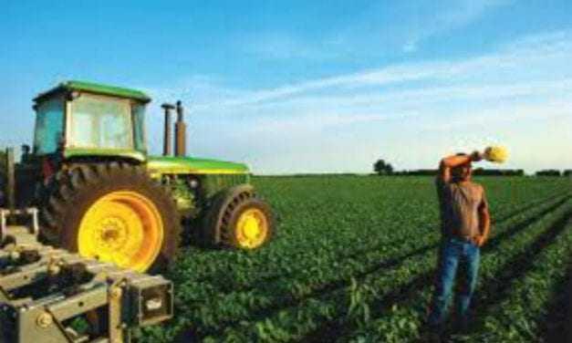 «Προδημοσίευση των Δράσεων 4.1.1 και 4.1.3 του Προγράμματος Αγροτικής Ανάπτυξης (ΠΑΑ) 2014-2020»