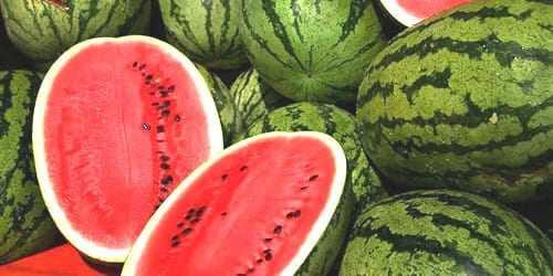 Πώς να επιλέγετε το καλύτερο καρπούζι – Τα μυστικά της θρεπτικής αξίας του