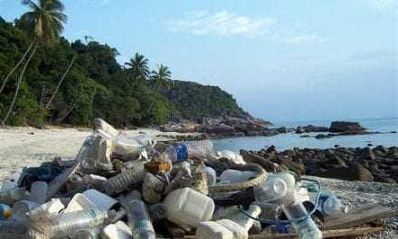 Πού πήγαν όλα τα πλαστικά του κόσμου