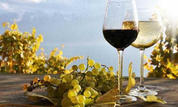 Άμεση κατάργηση του ειδικού φόρου κατανάλωσης στο κρασί
