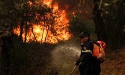 175 στρέμματα δάσους έγιναν στάχτη στην Δαδιά