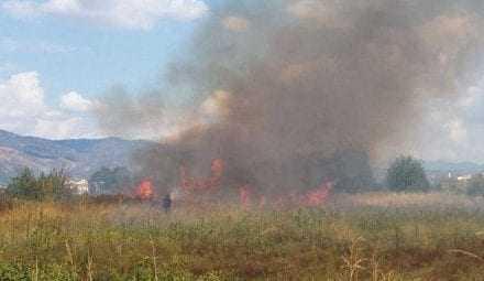 Κάηκαν ξερόχορτα στην περιοχή των παλιών σφαγείων