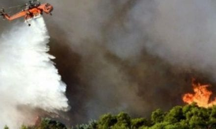 Πυρκαγιά Θάσου. Ελεγχόμενη η κατάσταση λέει ο Χατζηεμμανουήλ