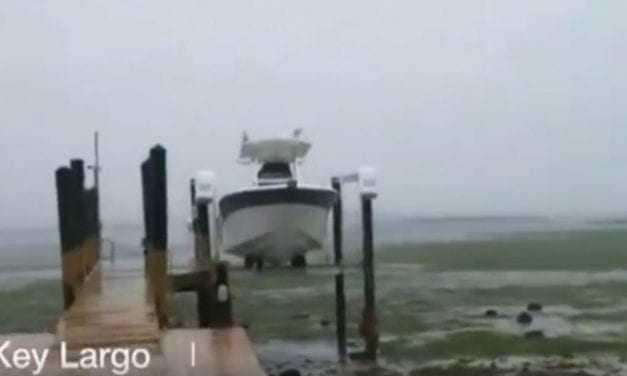 Βίντεο: Απίστευτο… Σκηνές Αποκάλυψης – Χάθηκε ο ωκεανός τον ρούφηξε η Ίρμα και στην φλόριντα