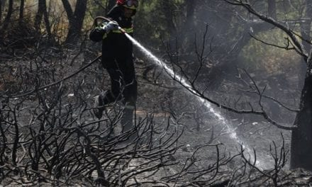 Κομοτηνή: Ολονύκτιος αγώνας των πυροσβεστών. Υπό έλεγχο η φωτιά στην ορεινή Δαρμένη