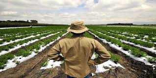Κατέσχεσαν επιδοτήσεις από τους αγρότες