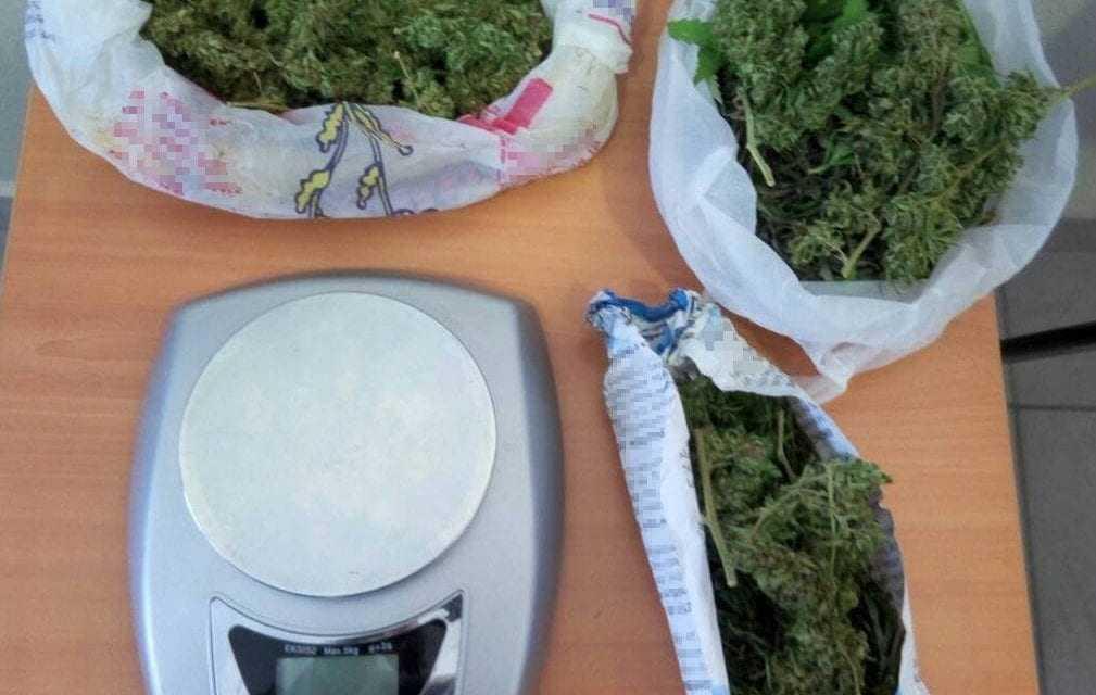 Καλλιέργεια και κατοχή ναρκωτικών στην Δράμα