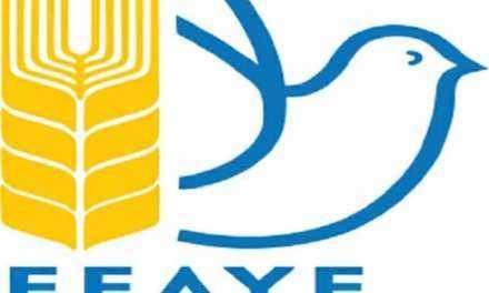 Προσυνεδριακές διαδικασίες της Ελληνικής Επιτροπής για τη Διεθνή Ύφεση και Ειρήνη (ΕΕΔΥΕ)