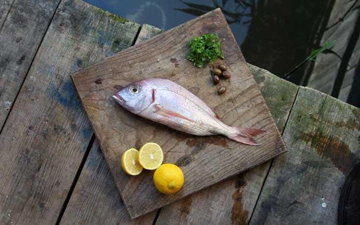 Συναγρίδα λαδολέμονο Χορταστική και υγιεινή επιλογή για το μεσημεριανό