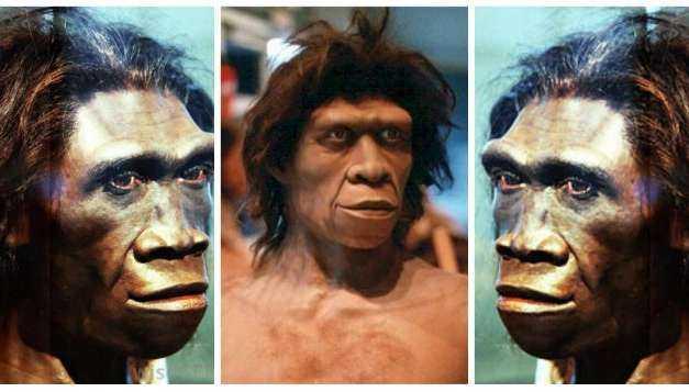 «Ο Homo erectus δεν ήταν ένας ηλίθιος πίθηκος, αλλά το πιο έξυπνο πλάσμα που περπάτησε στη Γη». Νέα θεωρία υποστηρίζει ότι ο «όρθιος άνθρωπος» ταξίδεψε μέχρι την Κρήτη και «εφηύρε» τον λόγο…