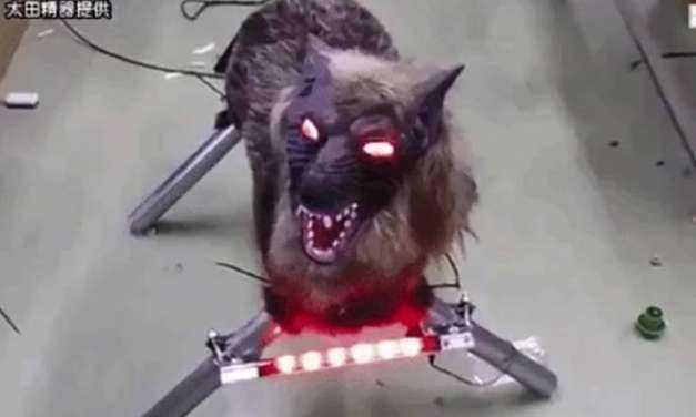Τρομακτικοί λύκοι-ρομπότ προστατεύουν τις καλλιέργειες στην Ιαπωνία