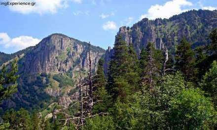 Δημιουργία Κέντρου Πληροφόρησης για το Εθνικό Πάρκο Οροσειράς Ροδόπης στη Δράμα με πόρους από το Επιχειρησιακό Πρόγραμμα της Περιφέρειας ΑΜΘ
