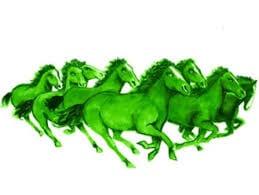 Παγκόσμια ημέρα πρασίνου και… «πράσινα» άλογα.