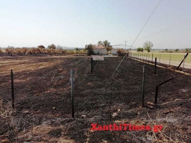 ΦΩΤΟΡΕΠΟΡΤΑΖ: Πυρκαγιά στην αγροτική περιοχή  του Πετεινού.