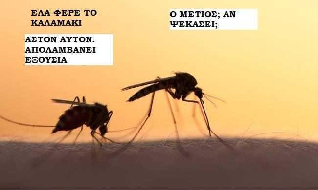 """Κουνουπια διψασμένα για αίμα. Κάτι σαν τους πολιτικούς που """"διψάνε"""" για εξουσία"""