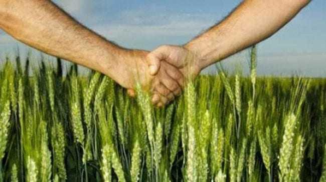 Αγροτική Ανάπτυξη στην ΑΜΘ