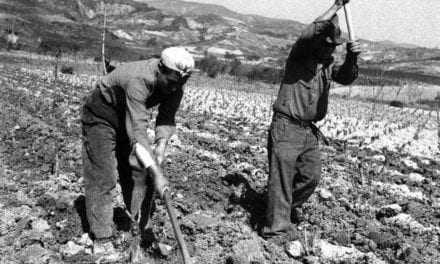 Σκοτώνουν την αγροτιά