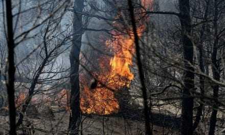Καίγονται οι Πηγές του Φονιά στη Σαμοθράκη. Η φωτιά καίει σε μεγάλο υψόμετρο