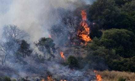Στο «κόκκινο» ο κίνδυνος πυρκαγιάς την Κυριακή – Σε συναγερμό πολλές περιοχές