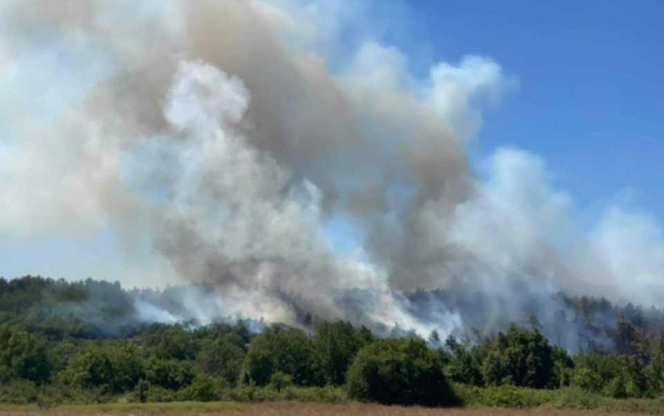 Ροδόπη: Υπό έλεγχο η πυρκαγιά στο δάσος της Νυμφαίας Ενισχύονται οι επίγειες και εναέριες δυνάμεις πυρόσβεσης στην περιοχή